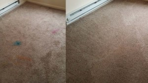 before-after--carpet-cleaning